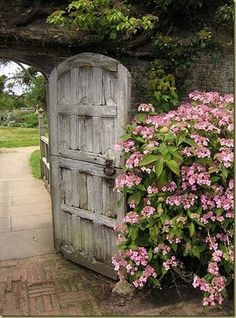 Lovely weathered door