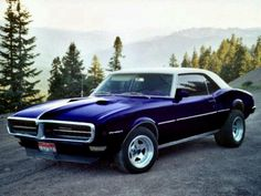 67 Firebird...was my first car.  Not as nice as this one though