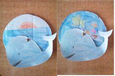 Τροχός φάλαινα στην επιφάνεια της θάλασσας και στο βυθό