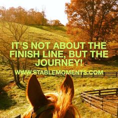Letting go of the agenda and staying present. www.stablemoments.com  #horse #quotes #foster #adoption