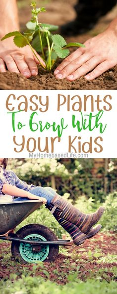 Easy Plants to grow with your kids. Start your garden with these! Gardening | #gardening | Gardening with kids | Kids Activity |  via @myhomebasedlife