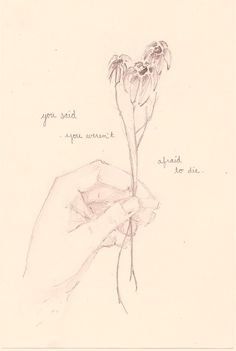 f yeah bright eyes! This is what I want my tattoo to look like of these flowers. Paul Simon, Modest Mouse, Love Drawings, Drawing Sketches, Typography Quotes, Art Quotes, Bright Eyes Lyrics, Mystic Valley, Conor Oberst