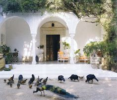 This 1920's garden and house in Tunisia remains a beloved destination for its owner, Hermes design director Leila Menchari who faithfully ma...