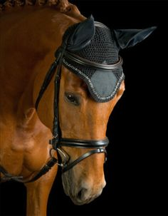 Kavalkade's Fly Veil with Rhinestones from SE Sport Horse - available in black, navy or white