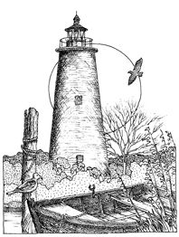 lighthouse cards lighthouse drawing obsession cling impression obsession adult coloring lighthouses cling mounted mounted rubber art impressions digi