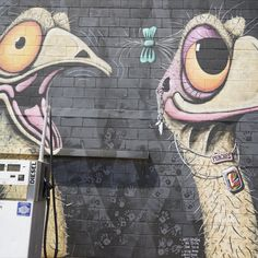 """Love this whimsical #dinosaur art (if you have any doubts that emus are #dinosaurs, just take a look at their feet!) Saw this mural at a gas station in Lightning Ridge, #Australia, a town known for its opals (and opalized dinosaur fossils). It's titled """"2 Kool 4 Skool"""" and credits many people including John Murray. #iknowdino Dinosaur Fossils, Dinosaur Art, Lightning Ridge, Gas Station, Opals, Dinosaurs, Whimsical, Australia, Cartoon"""