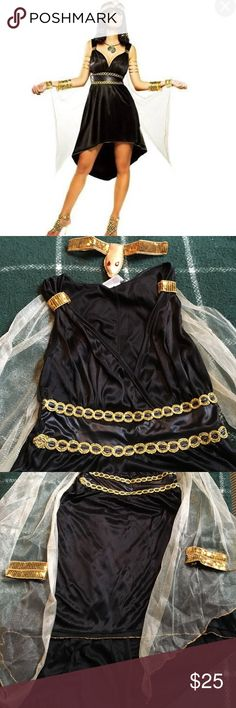 🎃NILE PRINCESS/ CLEOPATRA COSTUME Nile princess costume worn once for a Halloween party. In EUC. Head piece is an elastic sequin headband with red jewel eyes. Dress is double layered material with gold trim. Gold sequin arm cuffs Velcro. Sheer material hangs at arms. No smoking home. Dresses