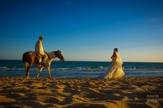 bride and groom on a horse walking on the beach