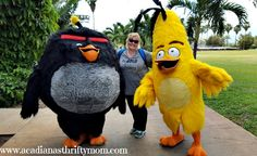 I Explored Bird Island With The Angry Birds #AlohaAngryBirds I am so excited to finally start sharing with all of you my amazing trip to Maui, Hawaii, where I explored Bird Island with the Angry Bi...