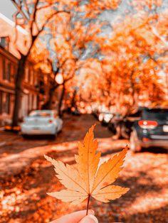 Philadelphia in the Fall