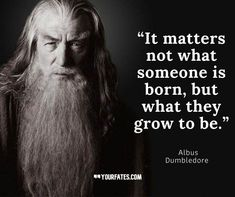 Inspirational Harry Potter Quotes for a Braver You Harry Potter Book Quotes, Hp Quotes, Harry Potter Journal, Harry Potter Feels, Harry Potter Jokes, Harry Potter Pictures, Harry Potter Aesthetic, Harry Potter Universal, Harry Potter Characters