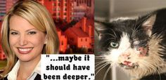 News anchor jokes about the zombie cat: 'maybe it should have been deeper'. Demand an apology! | YouSignAnimals.org