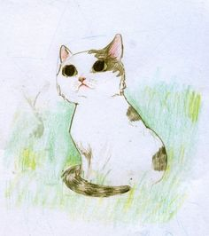 kitten sketch picture on VisualizeUs