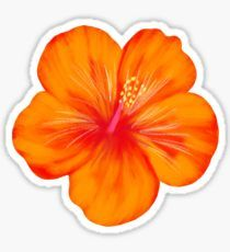 Buy 'Orange Hibiscus Sticker' by JillLouise as a Sticker, Transparent Sticker, or Glossy Sticker Preppy Stickers, Kawaii Stickers, Cool Stickers, Printable Stickers, Journal Stickers, Scrapbook Stickers, Planner Stickers, Homemade Stickers, Bubble Stickers