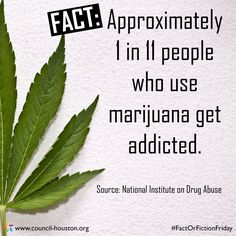 Fact: Approximately 1 In 11 People Who Use Marijuana Get Addicted.  Marijuana Addiction And The Best Rehab Centers For Treatment  http://www.rehabcenter.net/marijuana-addiction-and-the-best-rehab-centers-for-treatment/