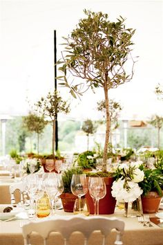 Provencal theme with olive trees as centerpieces.  Wedding by Monte-Carlo Weddings.