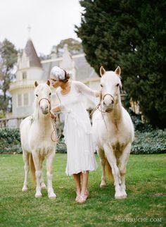 miniature pony fairytale land