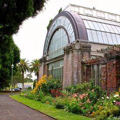 Auckland Domain Wintergarden - Auckland City, Auckland - New Zealand