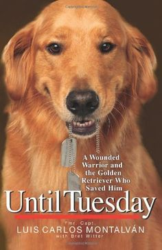 Until Tuesday: A Wounded Warrior and the Golden Retriever Who Saved Him by Luis Carlos Montalvan, http://www.amazon.com/dp/B005IZV2JA/ref=cm_sw_r_pi_dp_fXJvqb1CH5Q2E