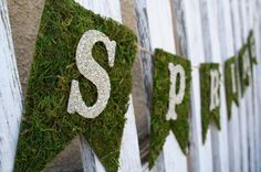 Love this spring grass moss banner