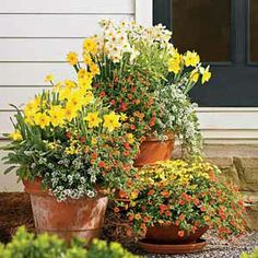 100 Creative Container Gardens In Pictures