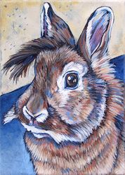 Binky the Rabbit, 5x7 acrylic on canvas- Pet Portraits by Bethany
