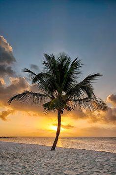 Beach Discover Key West Smathers Beach at Sunrise - Available Sizes: Tropical Beach Houses, Tropical Beaches, Big Island Hawaii, Island Beach, Famous Places In France, Beach Pink, Jamaica Vacation, Beach Aesthetic, Jolie Photo