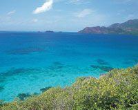 En las aguas cálidas y pobres en nutrientes del área marítima de Providencia se desarrolla una impresionante barrera coralina de 20 km de longitud y más de 500 m de ancho.