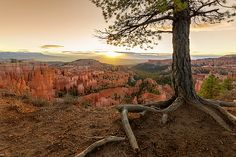 Sunrise 7, Save Nature, First Photograph, Bryce Canyon, Save The Planet, Fine Art America, Nature Photography, National Parks, Instagram Images