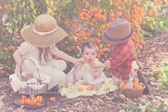 Clementine picking with my loves… » Wildflowers Photography