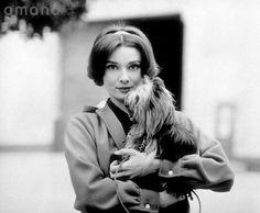 Timeless Audrey Hepburn/Одри Хепберн's photos – 16,558 photos   VK