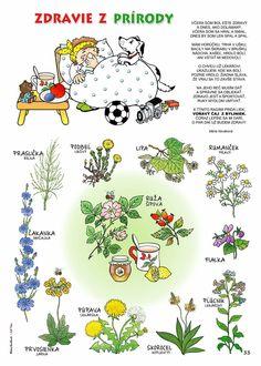 Crafts For Kids To Make, Diy And Crafts, Flower Activities For Kids, Health Activities, Learn English, Kindergarten, Homeschool, Jar, Biology