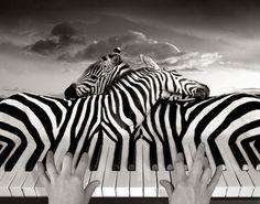 Das ist zwar ein Klavier. Aber das wäre doch auch eine Idee für die Dekoration eines Akkordeons - oder? Inzwischen gibt es ja nicht nur schwarze Instrumente! Stichworte: #Accordion #Art #Piano #Design