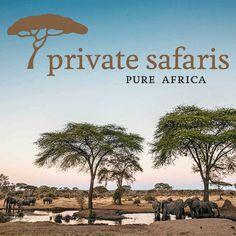 Sabi Sand Reisen - Safari & Badeferien - Private Safaris Mombasa, Nairobi, Parks, Private Safari, Kenya, Africa, Travel, Air Airlines, Tour Operator