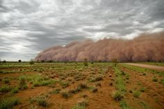 Dust storm near Umuwa, South Australia.