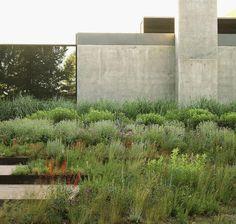 Landscape Gardening Courses Huddersfield Landscape Gardening Design Software Free #landscapegardeningdrawing