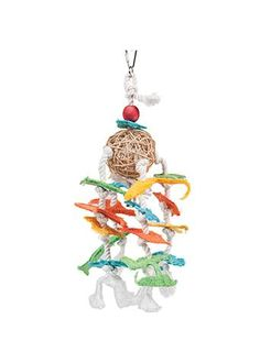 Westerman's Parrot Toys Various Designs Set 1 Parrot Toys, Set Design, Cute Animals, Birds, Club, Christmas Ornaments, Pets, Holiday Decor, Products