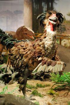 Las Vegas' Truly Terrible Dinosaurs: Dinosaur Tracking Blog - Smithsonian.com (Photo: Brian Switek)