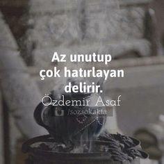 Resimli Sözler - Az unutup çok hatırlayan delirir. / Özdemir Asaf