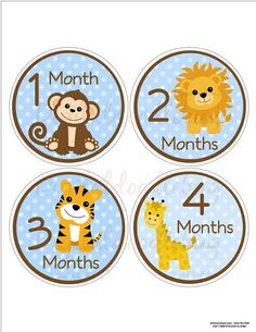12 baby month stickers safari 31blue animals  by digitaldoodlebug, $9.00