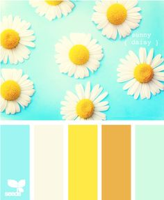 Does your daughter love daisies? If so what about using a sunny daisy as inspiration for a girls bedroom paint color? For more kids room color inspiration visit https://www.facebook.com/KidsRoomDecor