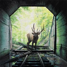 New surreal paintings by American artist Josh Keyes.  More art on the grid Visit his website