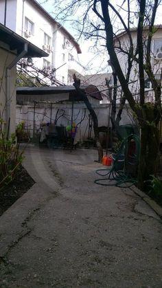 Vila 5 camere, Herastrau, ID 126000 -
