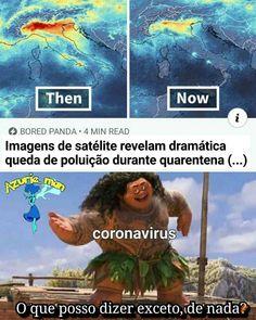 Memes Humor, Memes Status, Funny Memes, Jokes, Current Mood Meme, Image Memes, Cartoon Tv Shows, Clean Memes, Interesting Information