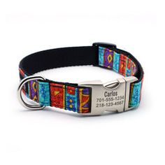 Designer Dog Collar With Personalized Buckle - Carlos