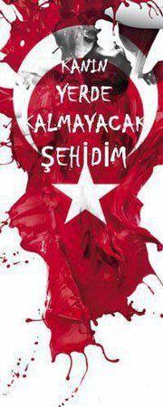 Turkey Flag, Republic Of Turkey, Ottoman Empire, Special Forces, Istanbul, Art Drawings, Christmas Bulbs, Neon, Photos