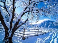 Nature desktop wallpaper winter wallpaper express is all about Winter Szenen, I Love Winter, Winter Magic, Winter Time, Winter Season, Vermont Winter, Winter Months, Wallpaper Winter, Nature Wallpaper