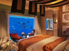 Here's where you can sleep with the fishes. Literally.