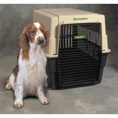 What We Like About the Kennel-Aire Remington Plastic CarrierThe Kennel-Aire Intermediate Remington Plastic Carrier is extremely durable