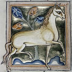 A spirited and finely-drawn horse. Bodleian Library, MS. Ashmole 1511, Folio 32v